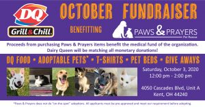 Dairy Queen Adoption Event